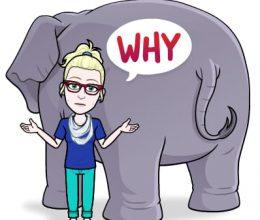 למה לשאול למה